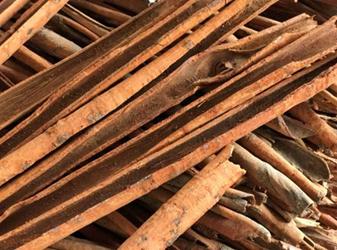How to choose a quality cinnamon? Tell TM